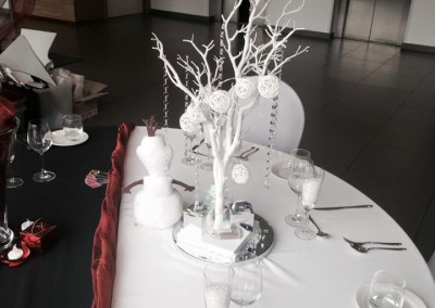 Centre Pieces & Chair Table Covers (15)